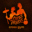 Mad Tribe Cross Gym