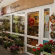 Margaréta Virág-Ajándék - Sashalmi Piac