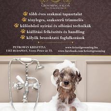 kutyakozmetika 16. kerület