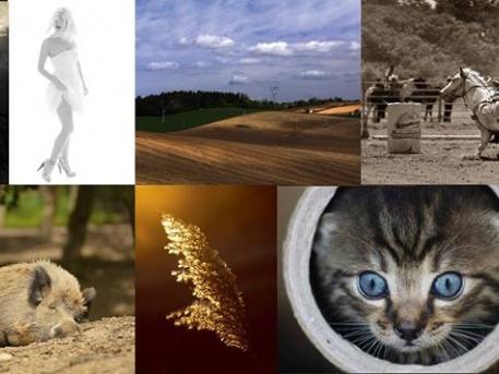 A fotókat a Fotó Art Fotósiskola tanítványai készítették a fotótanfolyam ideje alatt